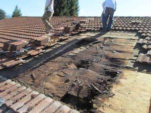 bçatı onarım Ankara çatı tamir işleri çatı onarım çatı aktarma kiremit aktarma çatı yalıtım çatı ustası çatı tamirankara çatı tamir, çatı tamir, çatı aktarma, çatı onarım, çatı tadilat, kenet çatı, kenet kaplama, çatı tamiri, çatı, bağlıca, kazan, ayaş, gölbaşı, haymana, 100.yıl, Aşağıeğlence, akdere, akpınar, altındağ, ata sanayi, ayvalı, balgat, barbaros, batıkent, beştepe, beytepe, boğaziçi, çamlıdere, çiğdem, demirlibahçe, dikmen, erdemkent, esentepe, etlik, fatih mah., gimat, gülseren, hacettepe, hasköy, incek, iskitler, kalecik, karşıyaka, saime kadın, saray, sincan, sokullu, subay evleri, şentepe, tandoğan, demetevler, topraklık, tuzluçayır, ulucanlar, ümitköy, yenidoğan, yunus emre, doğantepe, kesikköprü, kızılay, konutkent, kuşcağız, lalahan, maltepe, mesa, odtü, osman gazi, örnek mahallesi, bahçelievler, bilkent, ilker, keklikpınarı, mesa koru, dikimevi, kırkkonaklar, maltepe, topraklık, yıldız, kavacık, keçiören, kızılcahamam, pursaklar, akyurt, çubuk, yenimahalle, 60 evler, abidinpaşa, aktepe, angora, atakent, baraj, basınevler, beypazarı, büyükesat, küçük esat, cebeci, çankaya, çukurambar, dışkapı, dodurga, eryaman, evren, gazi, gop, gülveren, hamamönü, incesu, ivedik,Çatı tamir, çatı aktarma, çatı onarım, çatı tamiri, çatı tadilat, eksiz oluk, çatı oluk, kenet çatı, kaplama, ankara, karakusunlar, kavaklıdere, samanpazarı, seyranbağları, susuz, şenyuva, taşpınar, varlık, ulus, yenikent, yücetepe, kutludüğün, mamak, oran, ostim, öveçler, ovacık, anıttepe, incek, dikmen, polatlı, bala, elmadağ, elvankent, ayrancı, ahlatlıbel, akköprü, alacaatlı, aydınlıkevler, bağlum, sirkeli, beşevler, bahçelievler, birlik, cevizlidere, çayyolu, dikimevi, emek, esenboğa, etimesgut, fatih, gazino, güdül, güven, hasanoğlan, hüseyingazi, ilker, kalaba, karapürçek, kayaş, sanatoryum, sıhhiye, siteler, söğütözü, şaşmaz, turan güneş, ufuktepe, uyanış, yaşamkent, keklikpınarı, kolej, kurtuluş, esat, macunköy, mebusevleri, önder, temelli,Çatı tamir, çatı aktarma, çatı onarım, ça